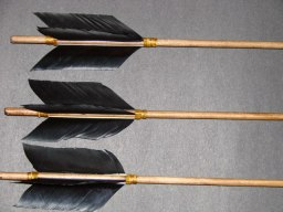 Black feathered Arrows